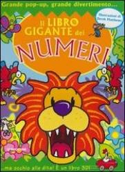 Il libro gigante dei numeri