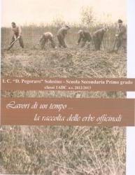 Lavori di un tempo: la raccolta delle erbe officinali