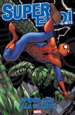 Spider-man alla grande!
