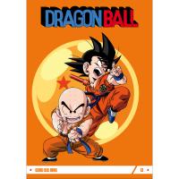 Goku sul ring